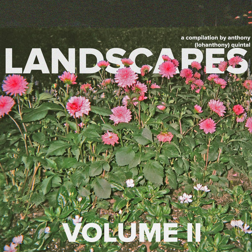 Landscapes Volume II