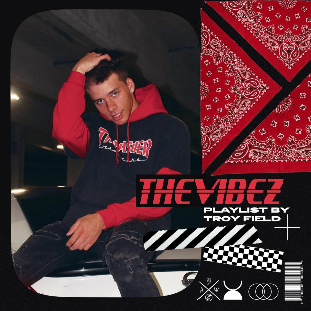 Thevibez